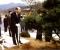 국사편찬위에 '전두환 기념식수' 있다