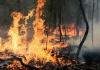 서호주 진진-댄다라간 긴급 산불 경보, 감시 행동 경보로 내려가
